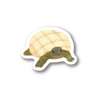 メロンパン  × リクガメ Stickers