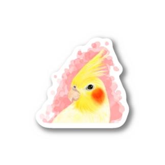 オカメインコ ルチノー【まめるりはことり】 Stickers