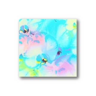 幸福が飛んでくる!イランの胡蝶蘭♡レインボー Stickers