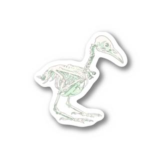 ハシボソガラス(骨) Stickers