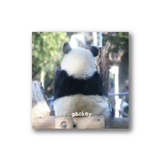 gackeyのシャンシャンメモリーⅠ Stickers