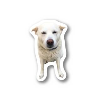 おじゃが耳ぺちゃ Stickers