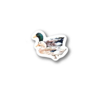 LOTTE26のカモ Stickers