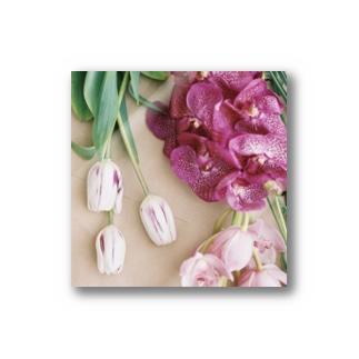 harucamera お花 Stickers