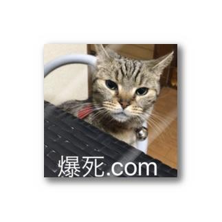 爆死.com ステッカー Stickers