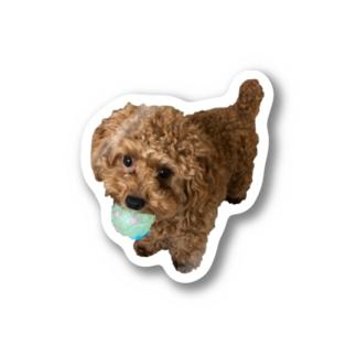 メルちゃんの可愛さを布教するだけのお店の伝説の秘宝を携えし犬 Stickers