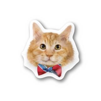 茶色いフワフワ猫 Stickers
