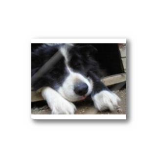 黒い犬 Stickers