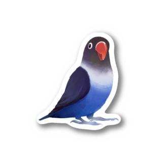 ボタンインコ おすましコバルトブルー【まめるりはことり】 Stickers
