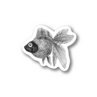 あのこの夜店ですくった金魚だと思って愛でたい Stickers