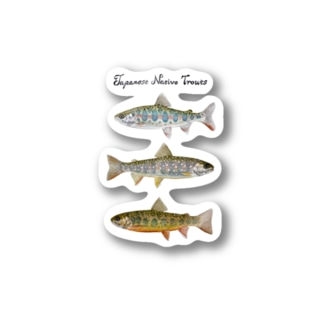 Japanese native trouts Stickers