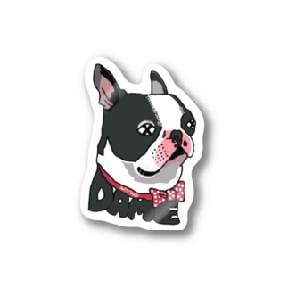 DAME PET Stickers
