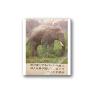 ネパールの象 Stickers