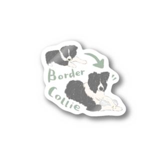 Border collie Stickers