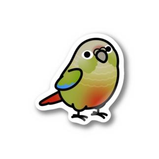 Chubby Bird ホオミドリウロコインコ シナモングリーン Stickers