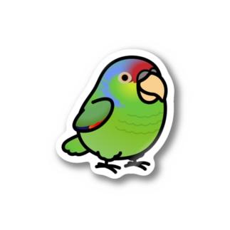 Chubby Bird フジイロボウシインコ Stickers