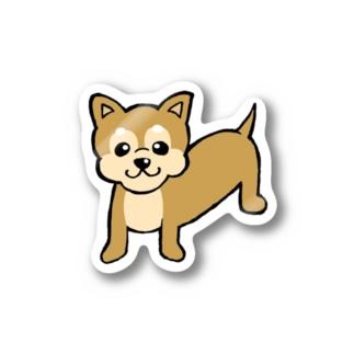 チワワえん(チョコレート&タン) Stickers
