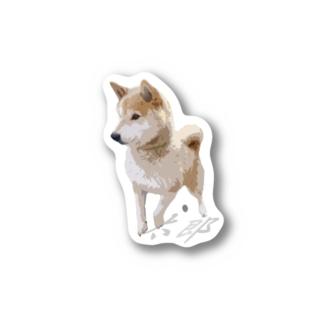 歩く太郎イラスト風【柴犬】名前入り Stickers