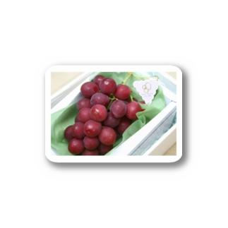 誰が食べられるんだ…初セリで1房110万円の値段がついたブドウを知っていますか Stickers