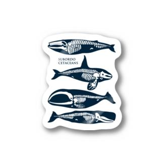 whalebone-stc Stickers