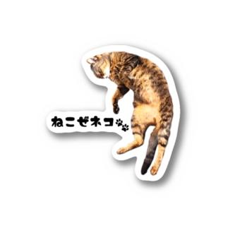 ねこぜネコ Stickers