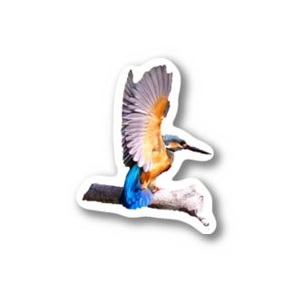 カワセミワンポイント Stickers