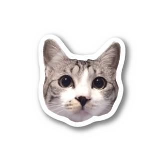 ルッコラのぷっくりお顔 Stickers