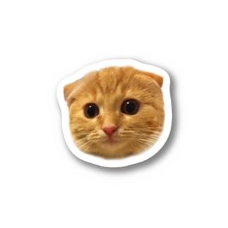 インゲン☆猫 Stickers