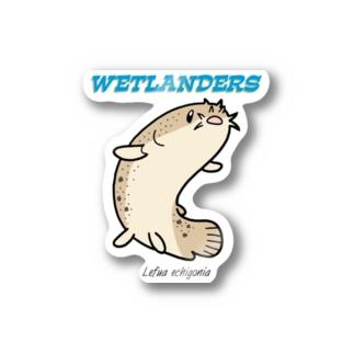 WETLANDERS(ホトケドジョウ) Stickers