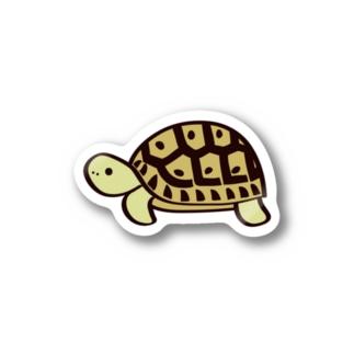 ギリシャリクガメステッカー Stickers