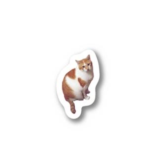 ねこのチャコちゃん Stickers