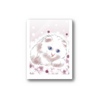 ペルシャ猫💝 Stickers