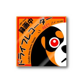 ドライブレコーダー用(日本語版)トライ Stickers
