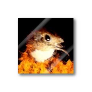 こちらヒメウズラ産卵抑制委員会公認ステッカー Stickers