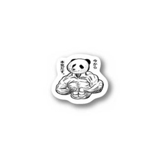 パンダ Stickers