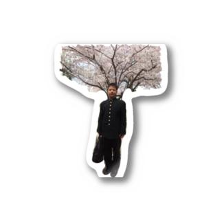 桜(独唱。) Stickers