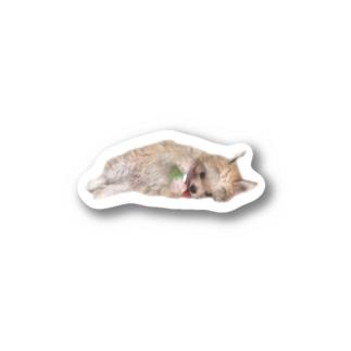 ステッカー Stickers