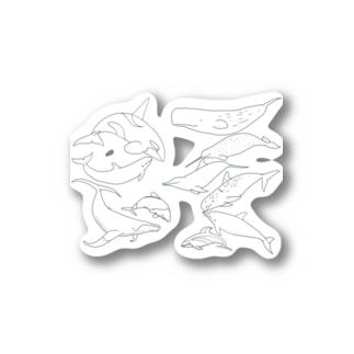 あなたの好きなイルカはなんですか? Stickers