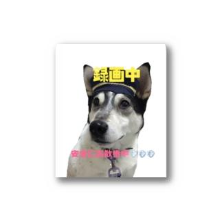 安全なお散歩のために「犬のお巡りさん」 Stickers