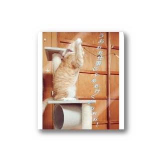 戦う猫  Stickers