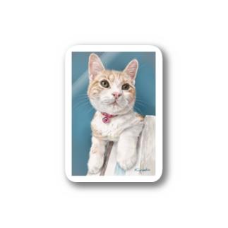 アメリカンショートヘアのボワちゃん猫絵 Stickers