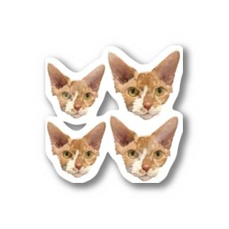 オーダー品 バズちゃん スフィンクス 顔 大2 小2 シール用 他 Stickers