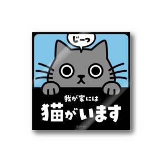 じーっとみる猫・猫がいます(灰色猫) Sticker