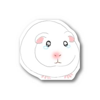 泣き虫モルモット Sticker
