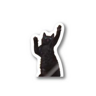 リアル黒猫ぽっち~ぃ Stickers