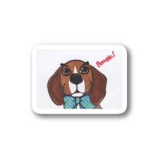 ビーグル犬 ステッカー Stickers