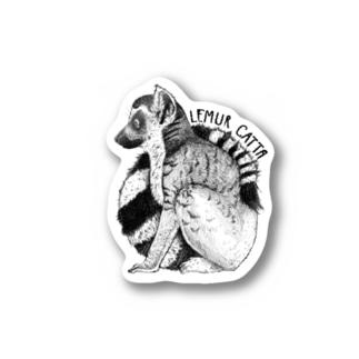 Lemur catta ステッカー