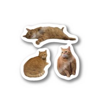 猫のまろんつめあわせ2 Stickers