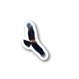 たかいたかーい 鳥 Sticker