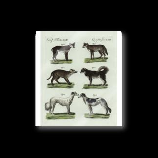 J. Jeffery Print Galleryの1802年ドイツの犬たち ステッカー